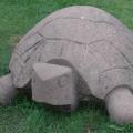 Zweibrücken -- Steinschildkröte