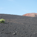 La Palma -- Vulkan-Landschaft