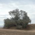 Gran Canaria -- Ausblick
