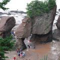 Hopewell Rocks -- Bei Ebbe