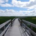 Prince Edward Island -- Greenwich Dunes Trail