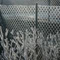 Winterstimmung -- Zäune mit Raureif