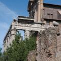 Tempel -- Antoninus Pius und Faustina