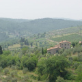 Toskana -- Blick ins Chianti-Gebiet