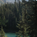 Jasper National Park -- Wanderung am Maligne Lake